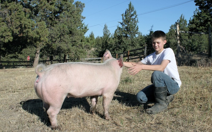 Connor and pig
